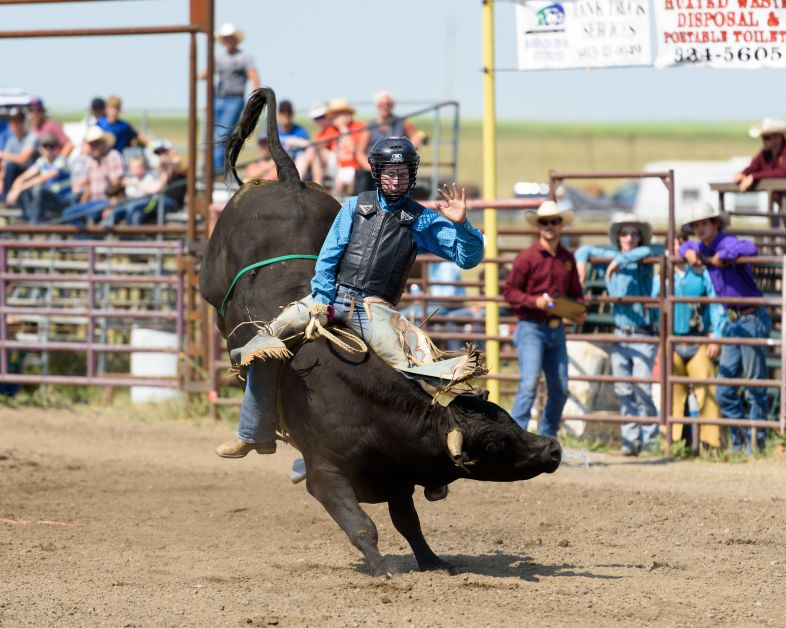 Denny McKinney of New Sarepta, AB., right, competes in the Junior Steer Riding portion of the 60th annual Rockyford Rodeo.