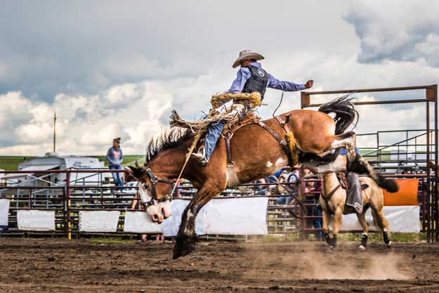Rockyford Rodeo NASH photo