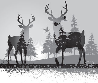deer-bw-graphic